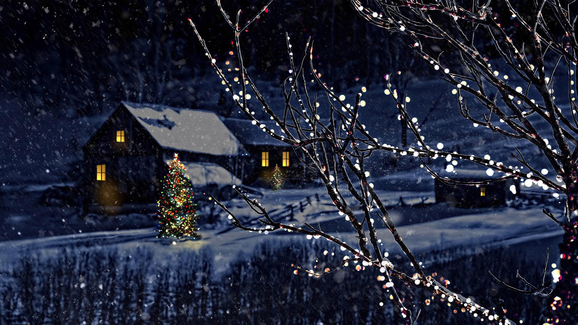 HDoboi.Kiev.ua - Украшенные деревья гирляндами на Рождество, обои на телефон андроид Новый год 2020
