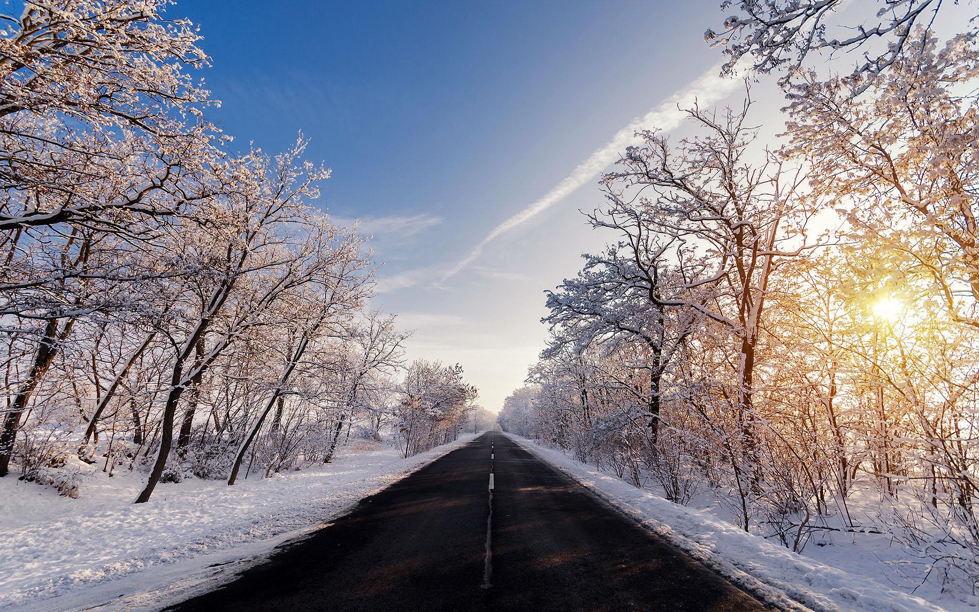 HDoboi.Kiev.ua - Покрытые инеем деревья зимой, зима на обои телефона