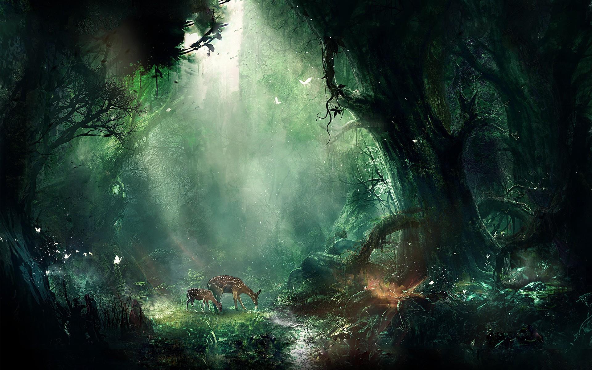 Магический лес, скачать в hd обои фэнтези, 1920 на 1200 пикселей