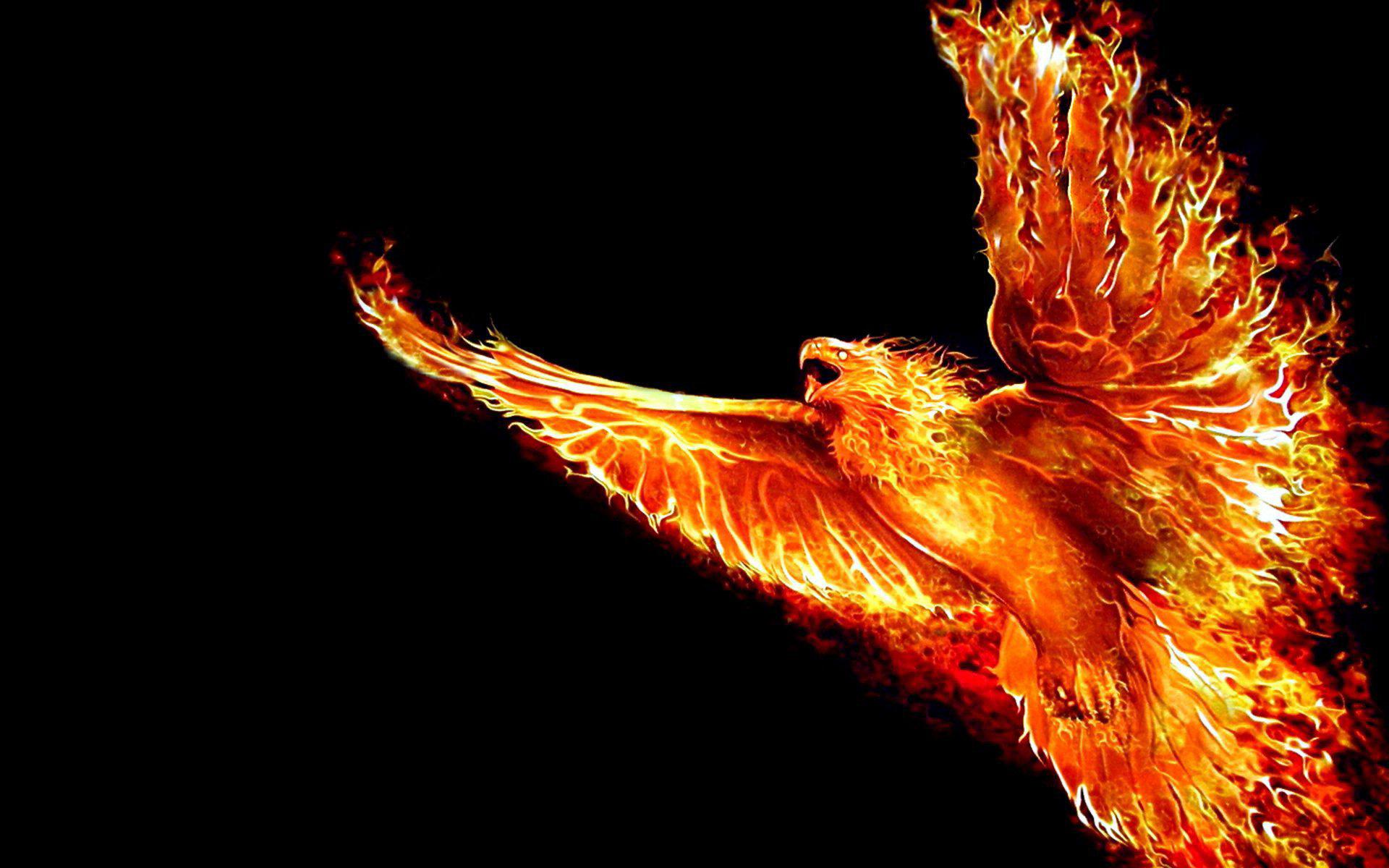 Огненная птица Феникс, 3d заставки телефона, 1920 на 1200 пикселей