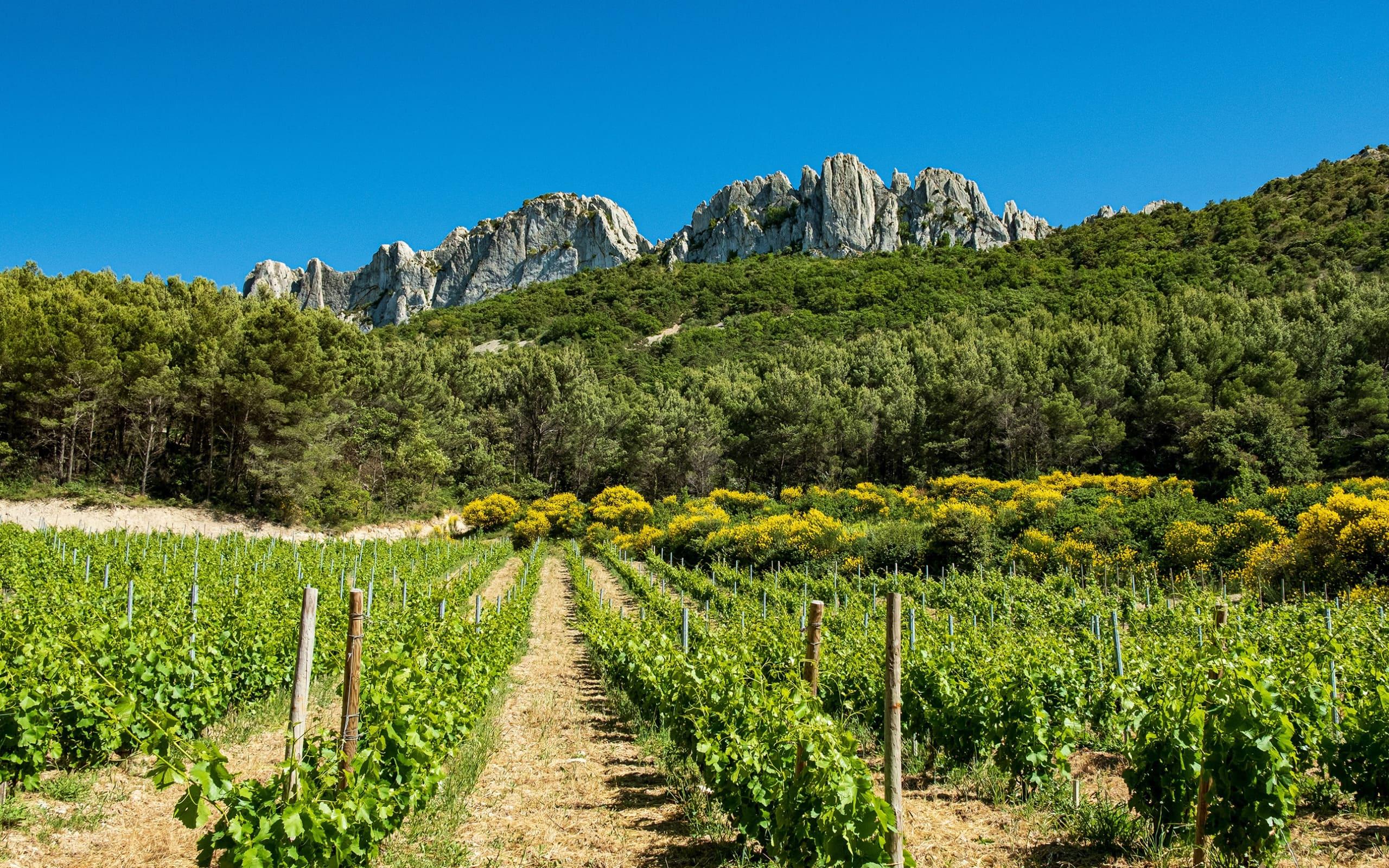 Горный пейзаж природы во Франции, заставки ultra hd, горы, солнце, 2560 на 1600 пикселей