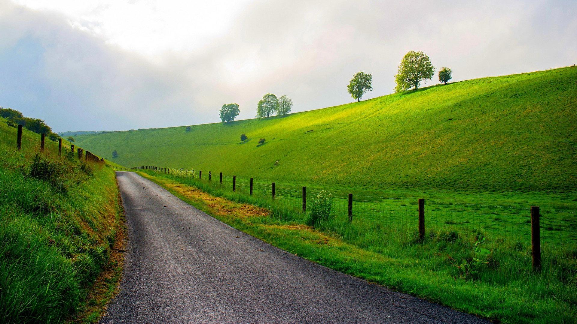 Весенний пейзаж вдоль дороги, природа, 1920 на 1080 пикселей