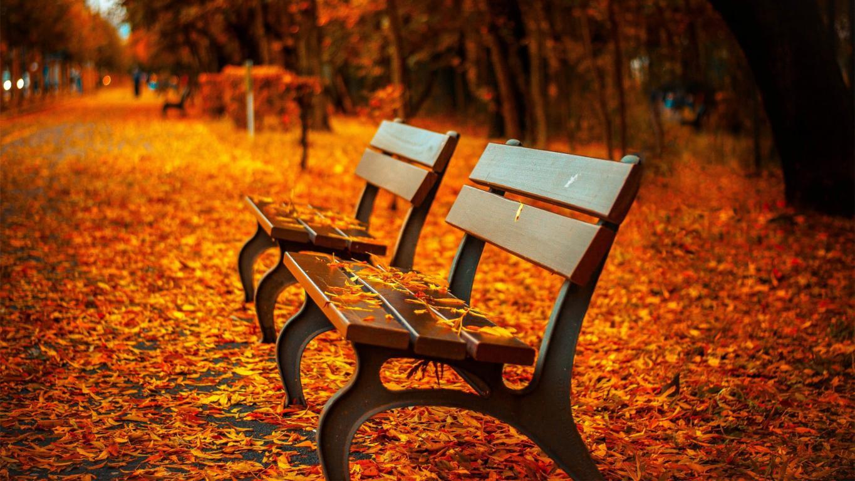 Деревянные лавочки в красивом осеннем парке, 3840 на 2160 пикселей