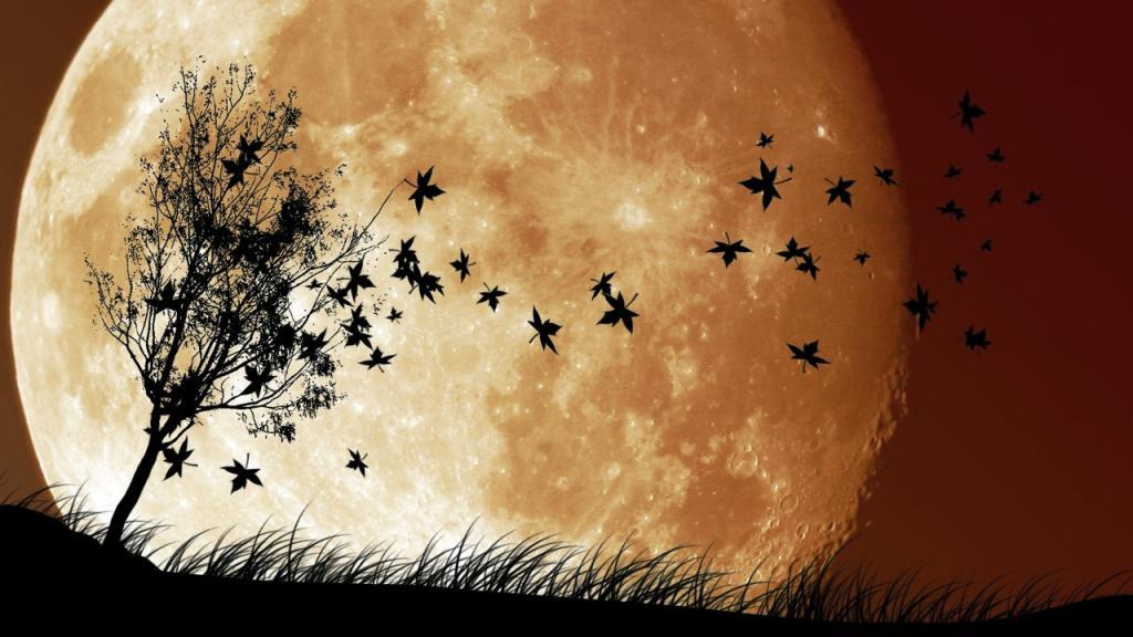 Большая луна обои на айфон 6, космос, галактика, hd заставки, 2560 на 1440 пикселей