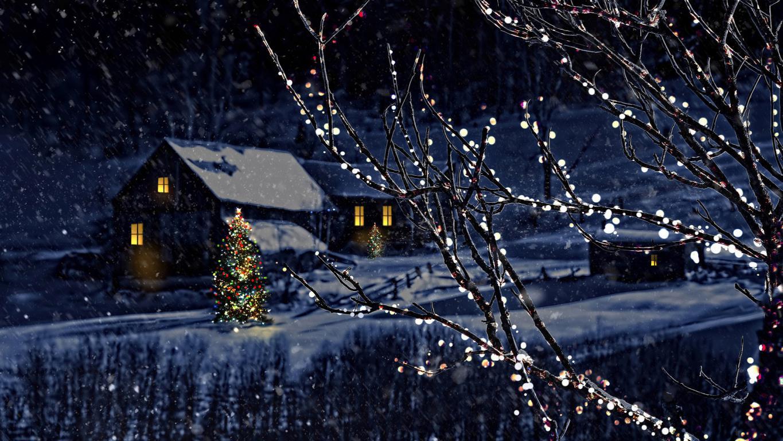 Украшенные деревья гирляндами на Рождество, обои на телефон андроид Новый год 2020, 1920 на 1080 пикселей