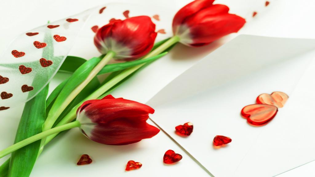 Три красных тюльпана на 8 Марта, 2560 на 1440 пикселей