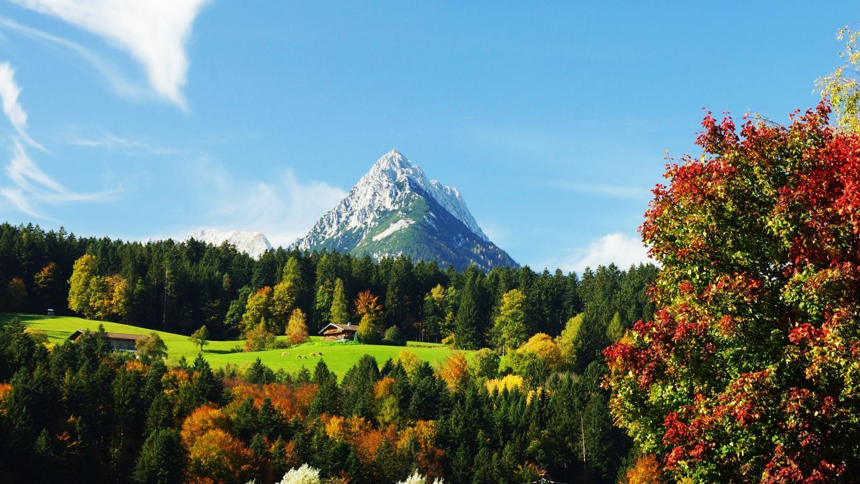Снежный горный пик, обои андроид горы, природа, лес, 3840 на 2160 пикселей