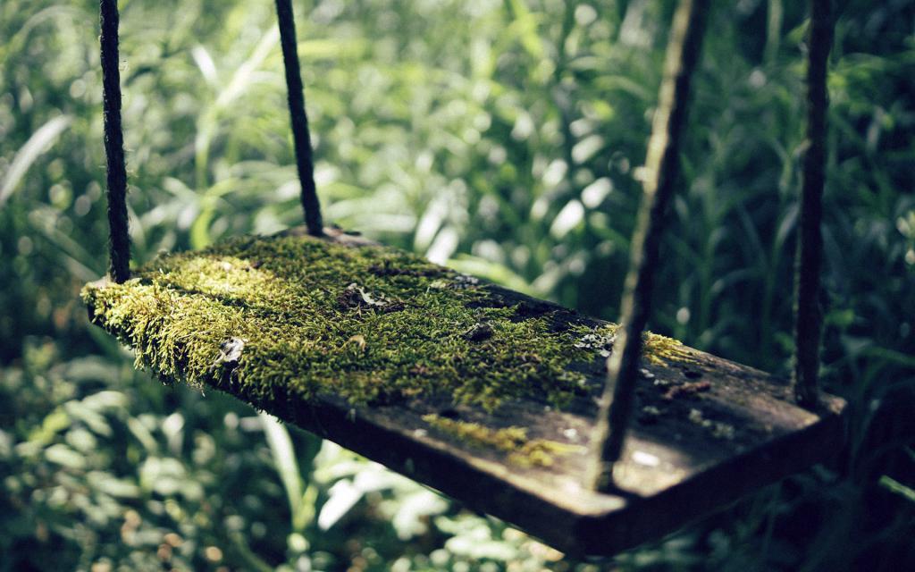 Мох на деревянной качели, скачать обои на смартфон природа, 1920 на 1200 пикселей