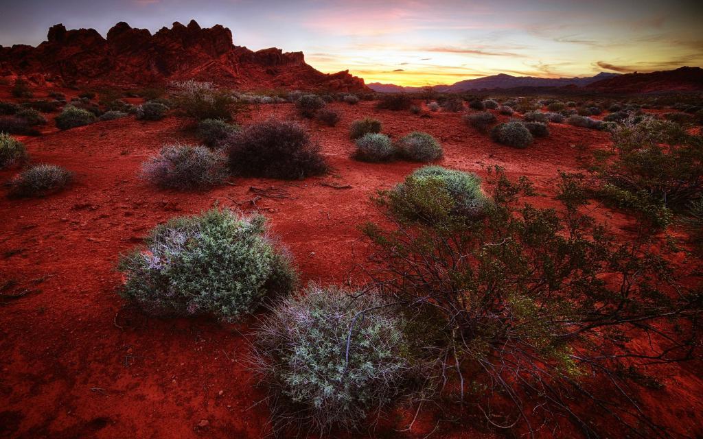 Красная пустыня, природа на заставку телефона самсунг, 2500 на 1563 пикселей
