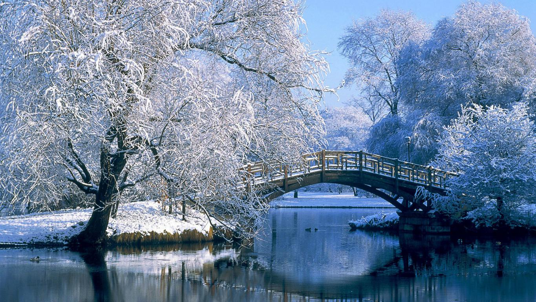 Красивый солнечный зимний день в парке, 1920 на 1080 пикселей