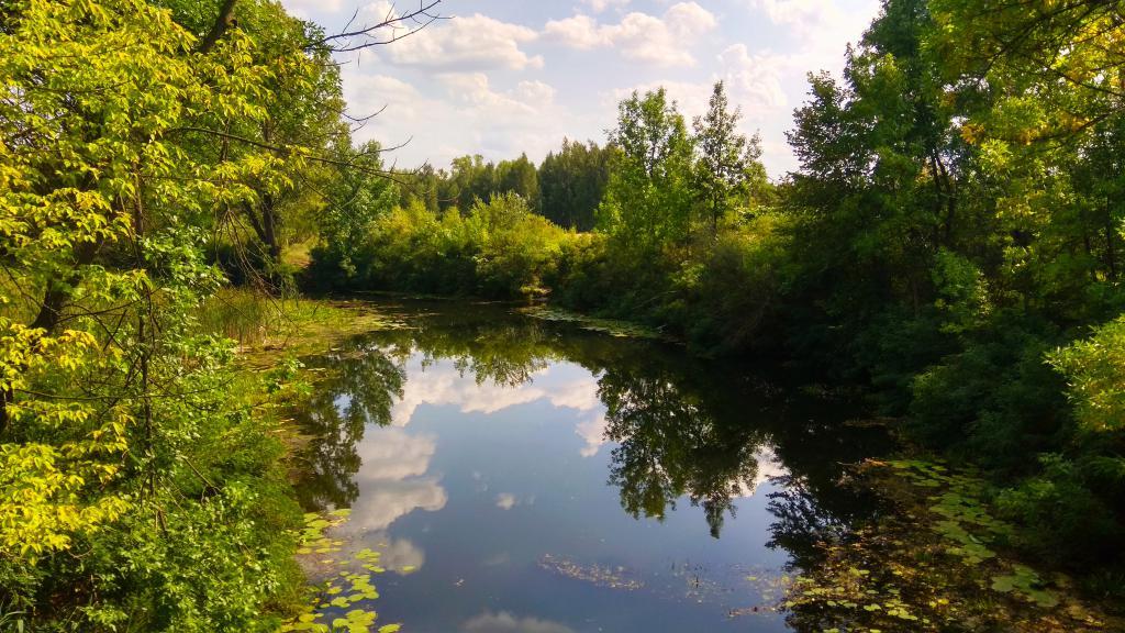 Река в лесу, 4к ультра ашди, заставка на планшет природа, 4160 на 2340 пикселей