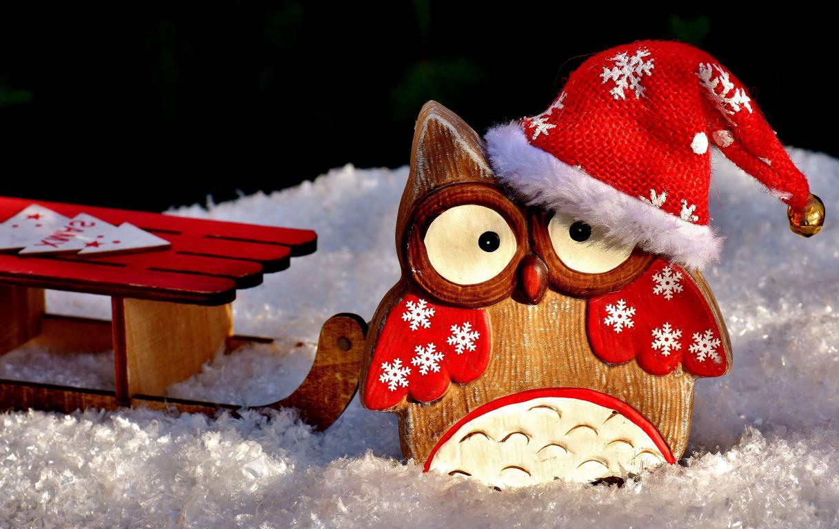 Деревянная сова в красной шапке на Новый Год 2020, 5120 на 3230 пикселей