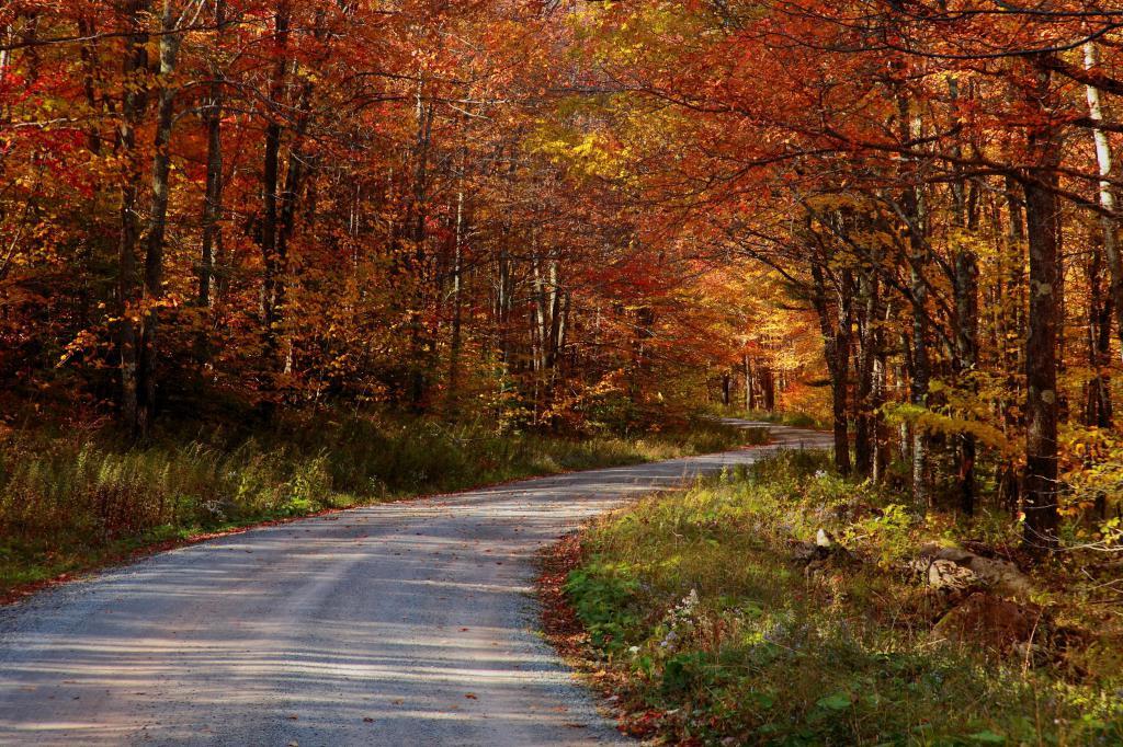 Осенний пейзаж дороги, Фон на рабочий стол 1680х1050, 3072 на 2048 пикселей