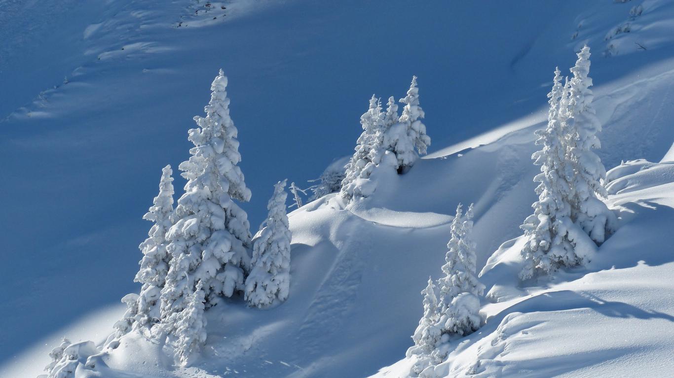 ели на вершине горы, зима, 4000 на 2248 пикселей