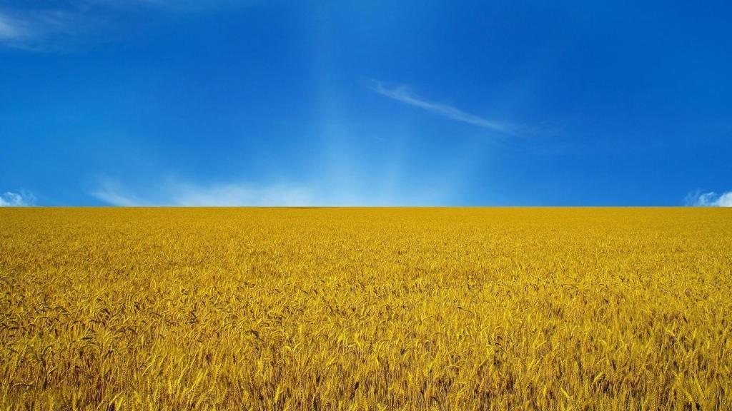 День Независимости Украины 2019, hd обои, 1920 на 1080 пикселей