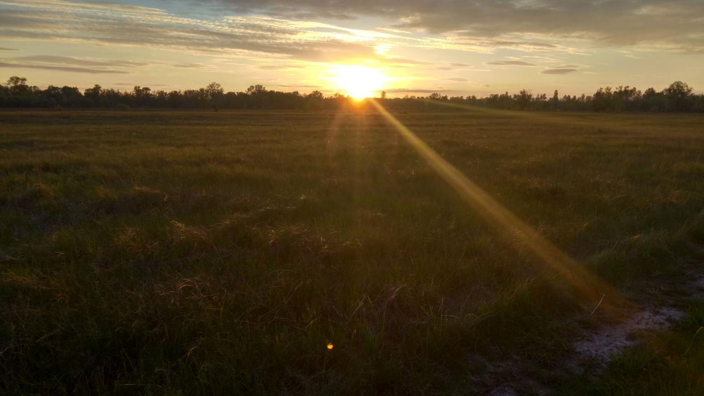 Красивый закат в поле, природа, 4160 на 2340 пикселей