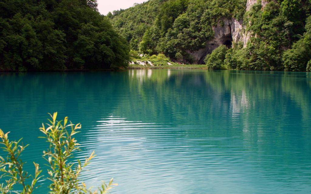 обои лето лес вода, природа, озеро, 2560 на 1600 пикселей