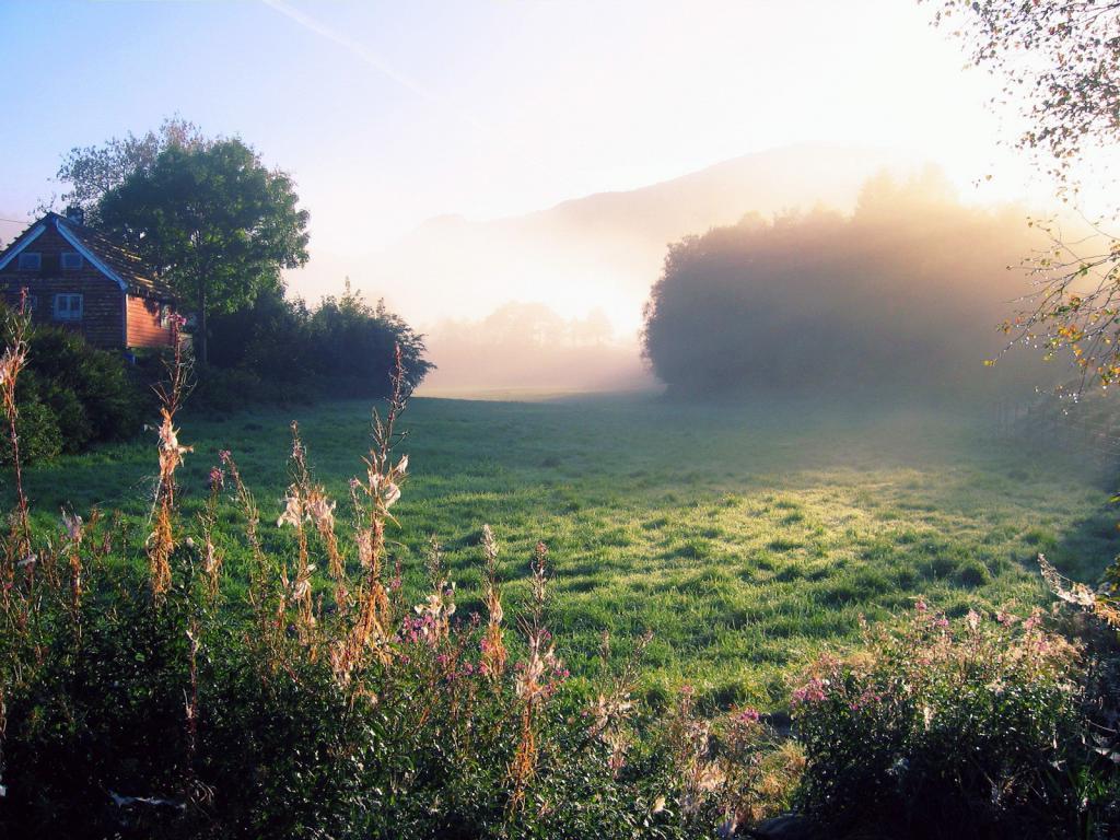 Обои деревня летом, утро, село, природа, туман, 1600 на 1200 пикселей