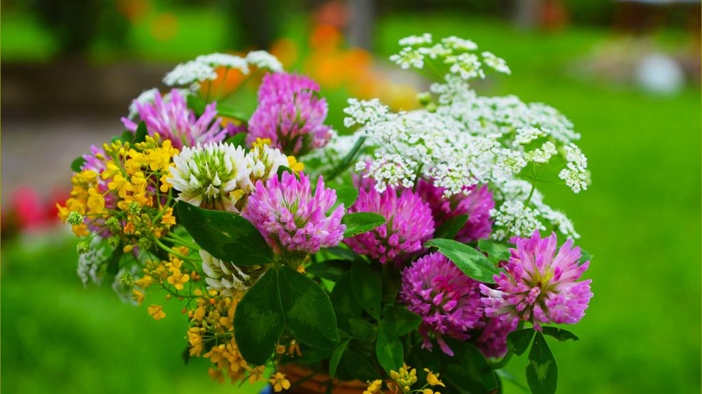Красивые весенние цветы, 3004 на 1689 пикселей