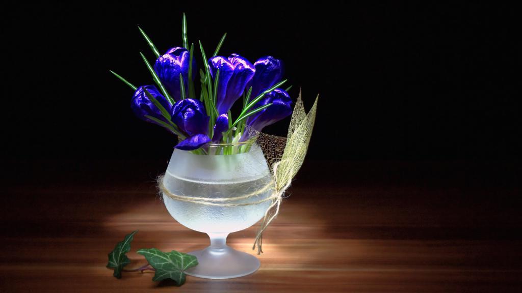Синие крокусы, цветы в вазе обои на рабочий стол, hd заставки, 2560 на 1440 пикселей