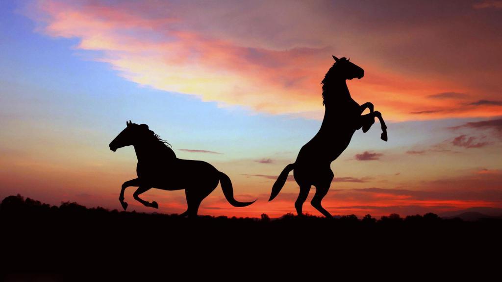 Два коня на закате, 3840 на 2160 пикселей